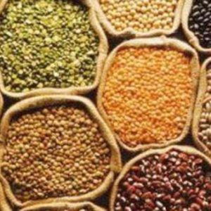 Seeds And grains