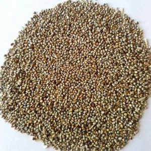 Specification Of Millet Seeds